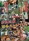 奴隷志願 野外ハードプレイ [DVD]