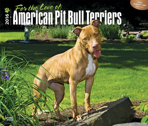 American Pit Bull Terriers, For the Love of 2016 Deluxe (Multilingual Edition) PDF