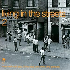 Living in the Streets Vol.2: More Wah Wah Jazz Funky Soul & Other Dirty Grooves [VINYL]