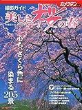 美しき桜の春 撮影ガイド