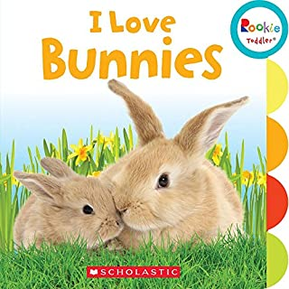 Book Cover: I Love Bunnies