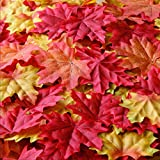 Bassion Package of Approximately 210 Assorted Mixed Fall Colored Silk Maple Leaves for Autumn Party or Weddings