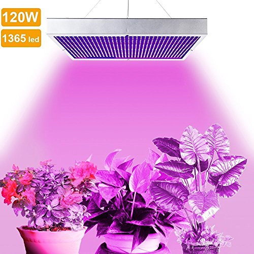 LVJING® 120W Led Grow Light Panel - Indoor Plant Light Bulb - 1365 Red + Blue SMD - High Power - for Hydroponic Greenhouse Aquatic Plants Flowers Vegetables Seed Starting Hydro Lighting (Green House With Heater compare prices)