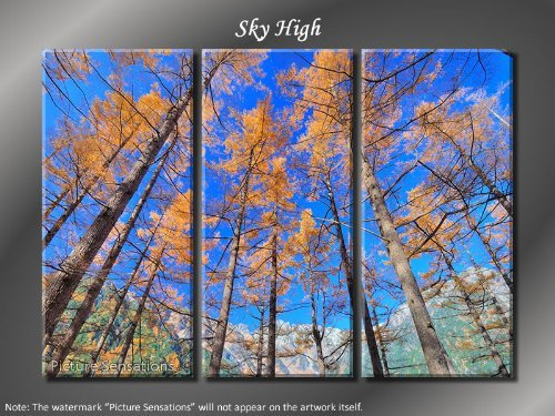 Framed Huge 3 Panel Modern Art Forest Trees Sky High Giclee Canvas Print