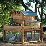 Round-Top Backyard Chicken Coop