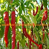 5 Original Pack, 35 Seeds / Pack, 175 In Total Cayenne Seeds Long Red Hot Pepper Seeds Long Hot Chili Seeds Land...