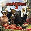 Dragons 2 : L'�le aux dragons