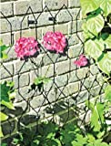 Agriframes Lattice Trellis-Pack Of 2