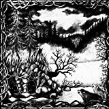 Die Isolation by MOLOCH (2015-07-10?