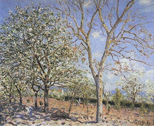 il-museo-uscita-colore-noce-e-alberi-in-primavera-1889-poster-online-buy-7620-x-10160-30-x-40-cm