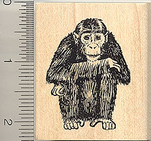 Chimpanzee Rubber Stamp, Ape, Chimp, African Wildlife