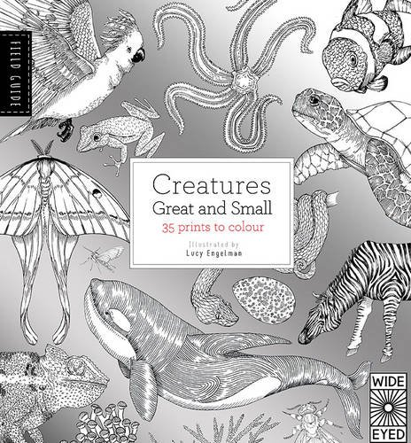 Field Guide: Creatures Great and Small (Field Guides)