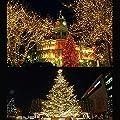 Velishy(TM) 2M Copper Wire LED String Christmas Fairy Lights