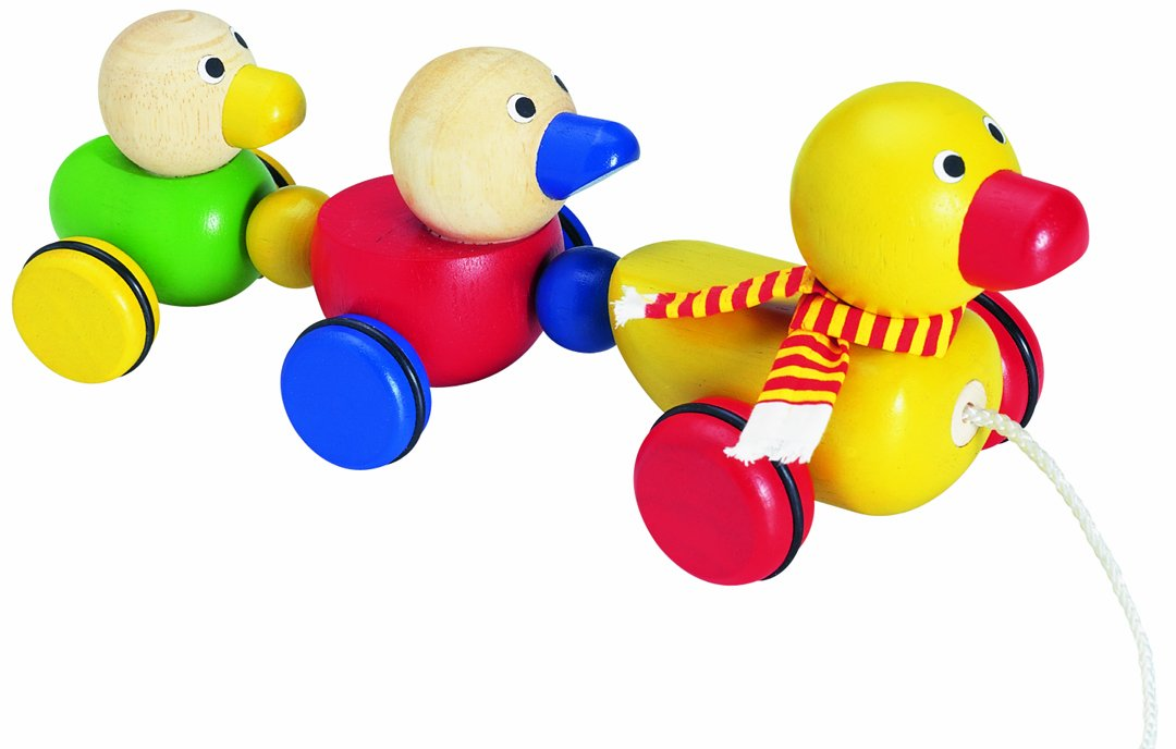 Wonderworld Duck Family Wooden Pull-Along Toy