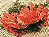【かにまみれ】浜茹で本たらば蟹姿 (オス・大 2.4kg前後) 10杯セット