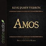 Holy Bible in Audio - King James Version: Amos |  King James Version