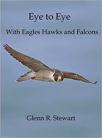 Eye to Eye With Eagles Hawks and Falcons