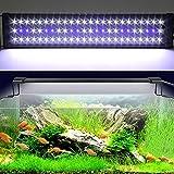 Etime Aquarium Beleuchtung Aquariumlicht LED Aquariumleuchten Aquariumlampen Aufsetzleuchte weiß+blau für 60-80cm Aquarium
