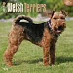 Welsh Terriers 2016 Square 12x12 Wall...