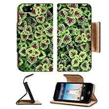 buy Apple Iphone 5 Iphone 5S Flip Case Painted Nettle Plant Texture Image 21373461 By Msd Customized Premium Deluxe Pu Leather Generation Accessories Hd Wifi Luxury Protector