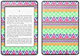 Kindle Paperwhite Decal/Skin Kit, Tribe