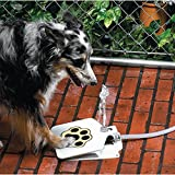 "Brand New Dog Pet Steel Water Fountain with 41"" Hose for Outdoor Use"