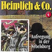 Aufregung in der Nebelsburg (Heimlich & Co. 4) | Susanne Schindler-Günther