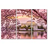 3 Pieces Modern Canvas Painting Wall Art The Picture For Home Decoration Washington Dc Tidal Basin And Jefferson Memorial Cherry Blossom Spring Moument Print On Canvas Giclee Artwork For Wall Decor