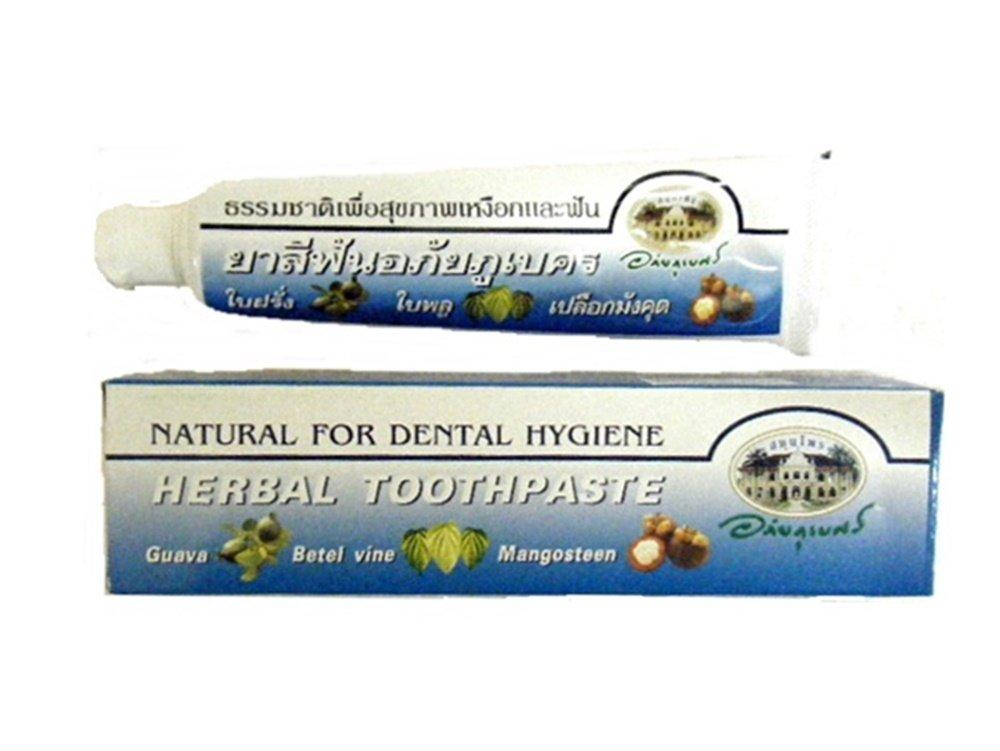 ハーバル歯磨き粉 70g