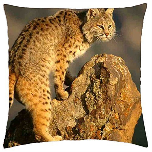 bobcat-throw-pillow-cover-case-16