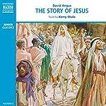 The Story of Jesus [British Narrator] | David Angus