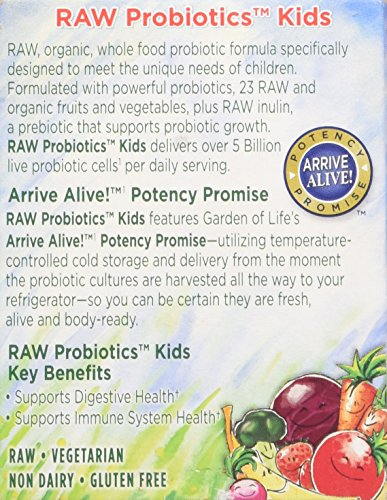 Garden Of Life Raw Organic Probiotic Kids 96g Powder 811927270526