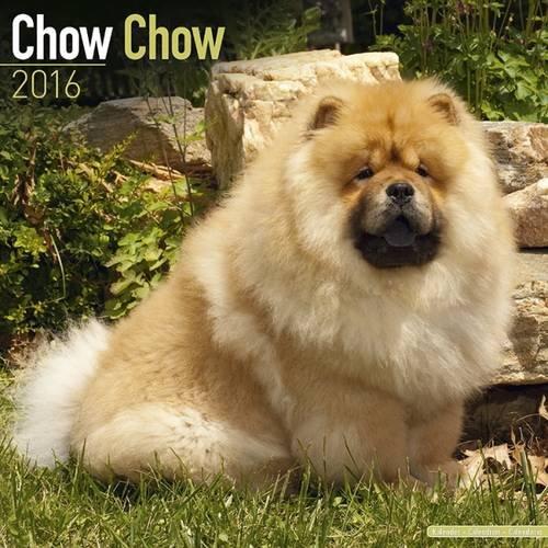 chow-chow-calendar-2016