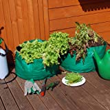 Pack of 2 Salad Planter Grow Bag