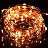 HAHOME Waterproof Led String Lights - 33Ft 100 LEDs Indoor and Outdoor Starry Lights with Power Supply for Christmas Wedding and Party Decoration - Warm White