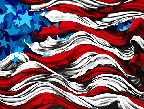 america-ptii-metal-print-edition-part-of-the-flags