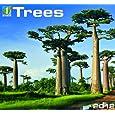 Trees Calendars
