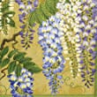Entertaining with Caspari Wisteria Paper Cocktail Napkins, Gold, Pack of 20