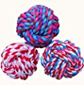 Wellbro Pet Chew Toys Knots Weave Cotton Rope Biting Small Ball For Dogs Cats 3 - Pack by Wellbro