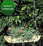 Blumenampel Fruticosus - Abmessung: 90 x 18 x 15 cm