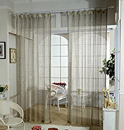 Droyee Fashionable Polyester Sheer Window Curtain,Hollowed-out Voile Window Panel,Window Screening,Wrinkle Free(2 Panels,Coffee,52*108Inch)