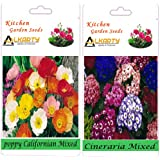 Alkarty Poppy Californian Mixed And Cineraria Mixed Flower Seeds Pack Of 20 (Winter)