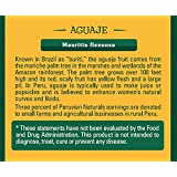 Aguaje Powder 3.5oz (100g) - Peruvian Naturals | Moriche Palm Fruit Powder from Peru (