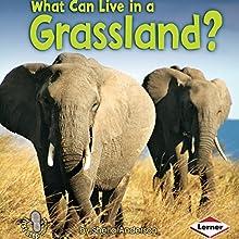 What Can Live in a Grassland? | Livre audio Auteur(s) : Sheila Anderson Narrateur(s) :  Intuitive