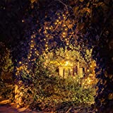 Solar LED String Lights, 39.1ft, 100 Led Warm White Flower, 9+ Hours Illumination, Waterproof, Outdoor Solar Fairy Lights, Christmas Lights, Ambiance Lights, Party Wedding Decorations - warm white
