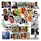 Meme Sticker Pack [30pcs], Funny Internet Memes and Celebrity Vinyl Stickers, for Laptop Phone Luggage Computer Mug Notebook Home Wall Snowboard MacBook [Non-Reflective, Waterproof, Sunproof] (Color: Meme)