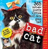 Bad Cat 2014 Page-A-Day Calendar