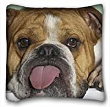 """Decorative Square Throw Pillow Case Animals English bulldog is language tired 18""""*18"""" Two Side"""
