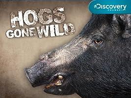 Hogs Gone Wild Season 1 [HD]