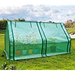 Quictent Upgraded Large Door Portable Mini Greenhouse Green Garden Hot House Grow Tent More Size (71
